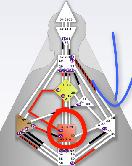 Sacral Authority Human Design System