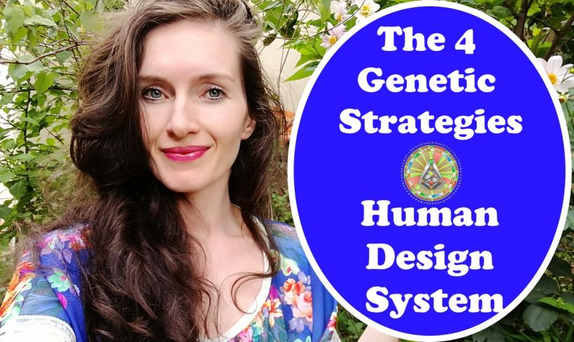 The 4 Strategies In The Human Design System